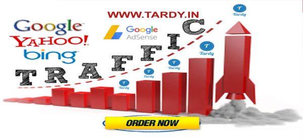 Web Traffic Service Ultimate Plan