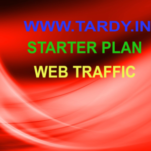 Web Traffic Service Starter Plan